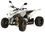 Explorer Trasher 320 Autom. Supermoto
