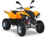 Adly ATV 300 Crossroad Sentinel
