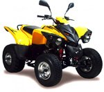 Adly ATV 300 Crossroad