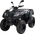 Adly ATV 320 Canyon Bj. 07-09