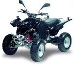 Adly ATV 50 RS XXL schwarz