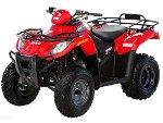Arctic Cat ATV 250 Utility ab Bj. 06