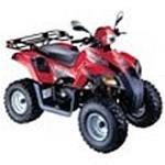 Dinli DL 603 50ccm