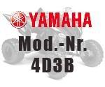 Yamaha YFM 250 Raptor 4D3B